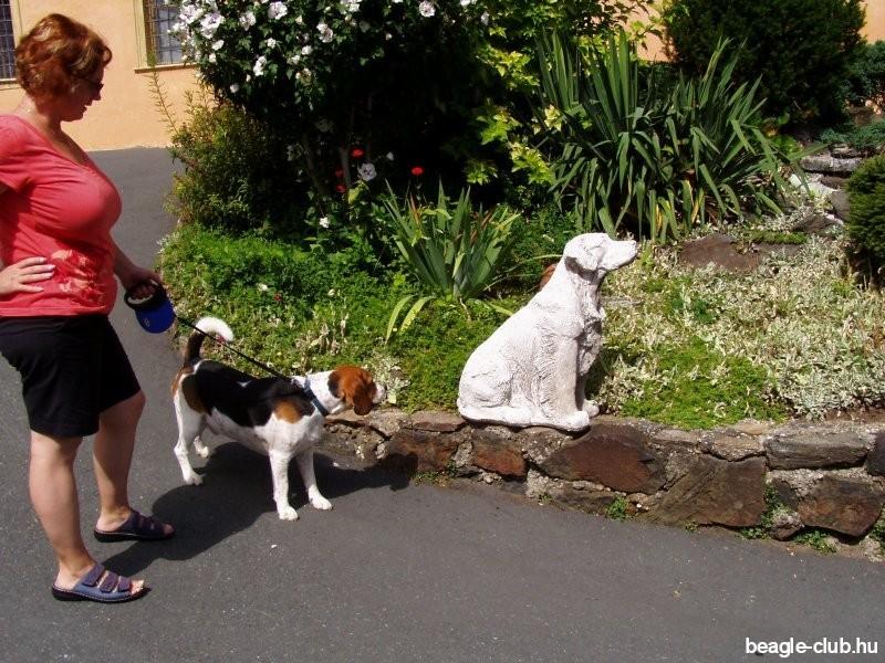 Kutya szobor a Deutschlandbergi vár udvarán