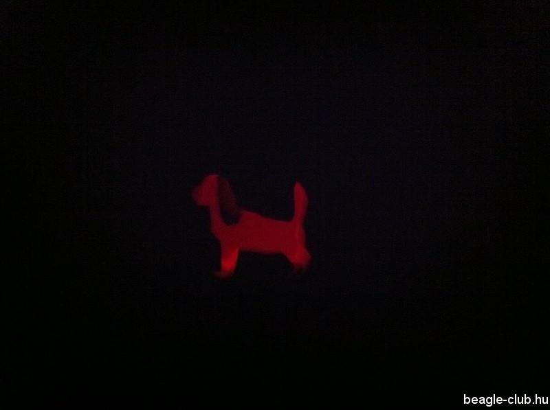 Beagles tök - Beagle Halloween