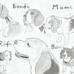 Beagle kutyák rajz