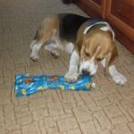 Axel első karácsonya, ajándékbontás
