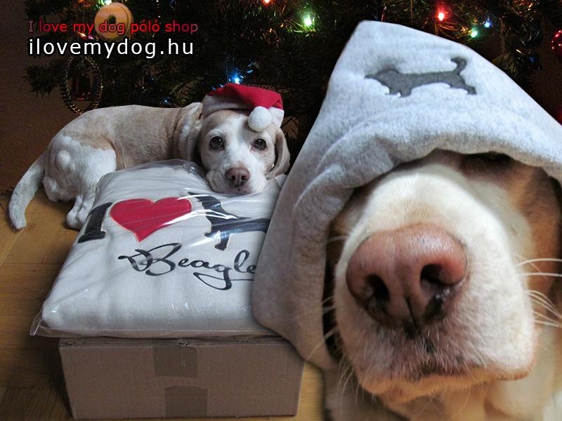 I Love Beagle pulcsi