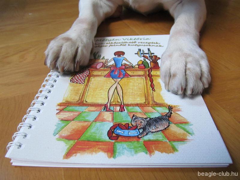 Motyán Viktória: Otthon elkészíthető receptek kutyáknak