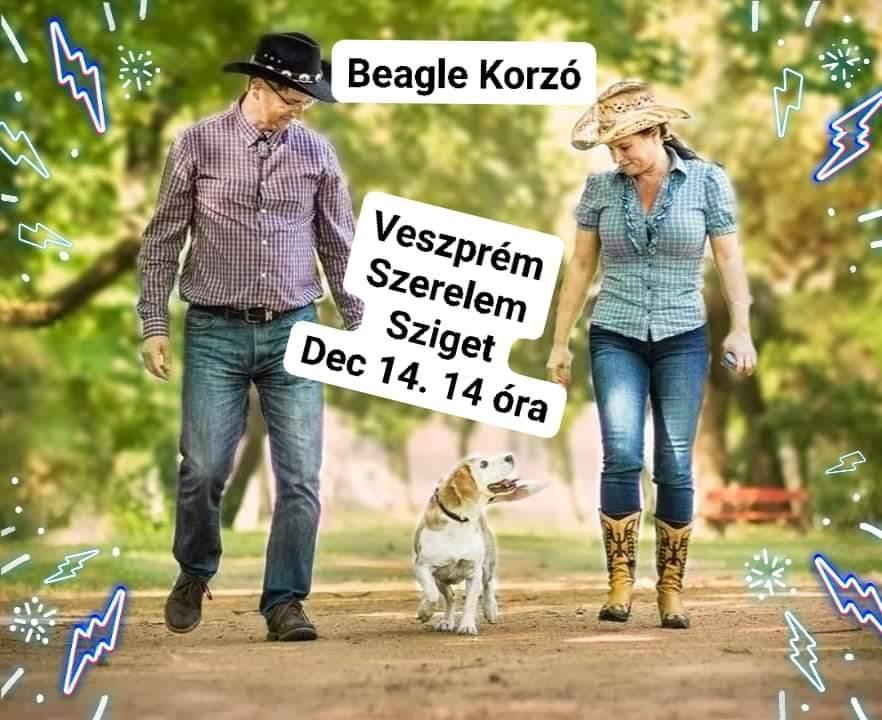 Beagle korzó Veszprémben