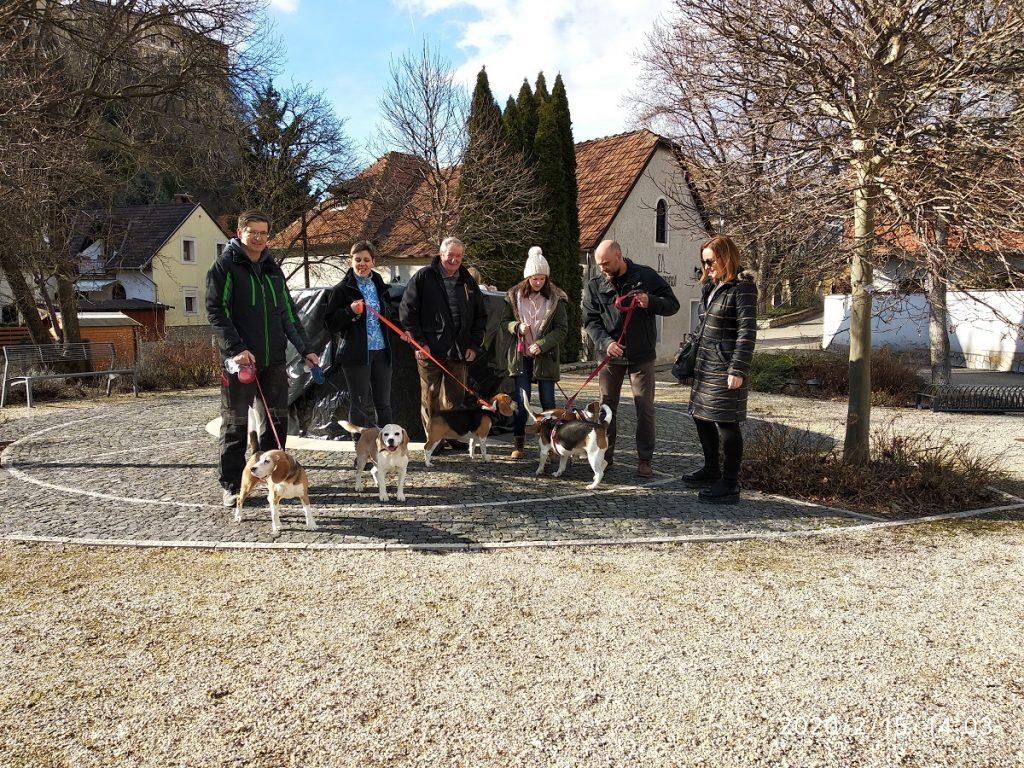 5. Beagle Korzó beagle kutya találkozó