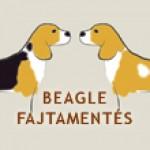 Beagle Fajtamentés (BEAGLE-ért KHE.) csoport logója